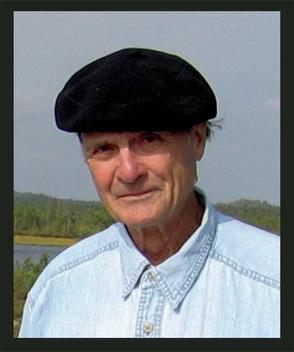 A.A.Velichko